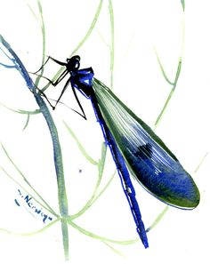 Dragonfly art Painting, original watercolor 8 x 6 in, BLUE GREEN  wall art by ORIGINALONLY on Etsy