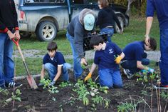 Native plant gardens in Eaton County, community gardens, school gardens, etc