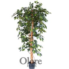 4ft Premium Green Ficus Tree - Indoor Artificial Tree by Olore Home