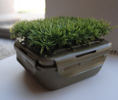 Grass Top Geocache Container #geocaching #caching #unique geocaches    reminds me of one I just made