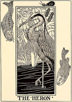 "eching Percy J. Billinghurst [British, Illustrator and writer,active late 19 Century] Wood engraving ""A Hundred Fables of La Fontaine"" Illustrated by Percy J. Billinghurst in 1899 Selected fro Baby Laden, Heron Tattoo, Art Nouveau, Crane Tattoo, Vogel Tattoo, Bird Artwork, Bird Illustration, Blue Heron, Wood Engraving"