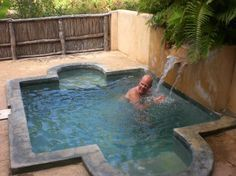 tropical garden plunge pool with water feature and rounded step entry on both sides featuring decorative edging Small Swimming Pools, Small Pools, Swimming Pools Backyard, Lap Pools, Indoor Pools, Pool Decks, Backyard Pool Designs, Small Backyard Pools, Backyard Landscaping
