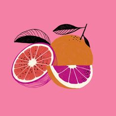 food and fruit illustration orange art kitchen print