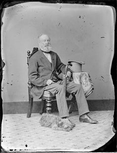 Photograph taken by the studio of William James Harding, Whanganui. Source of descriptive information - Negative register and inscriptions on nega. David Stark, Williams James, Old Dogs, Dog Portraits, New Zealand, Dogs