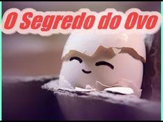 comer ovo pela manha Dr Lair Ribeiro