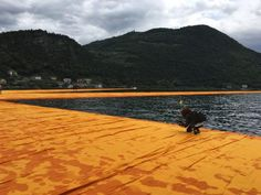 Christo, The Floating Piers, installazione sul Lago d'Iseo, foto di Anna Mattioli