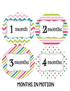 Months in Motion 212 Monthly Baby Stickers Baby Girl Months 1-12 Milestone Sticker * Read more  at the image link. (This is an affiliate link and I receive a commission for the sales)