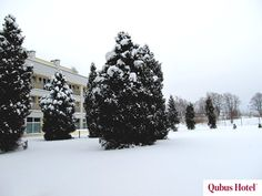 Winter views in the hotel garden in Qubus Hotel Wałbrzych