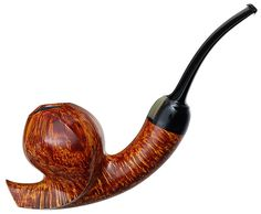 Abe Herbaugh Smooth Forrestiana with Horn