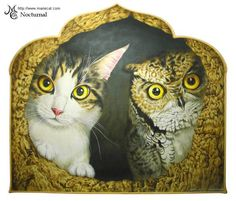gato y buho