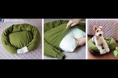 """DIY dog bed! You will need: an old sweatshirt, bed pillow, polyfill or other stuffing, one lucky dog.   1. stuff sleeves and shoulder/collar area of sweatshirt (you might need to put in a few stitches to create a """"pocket"""" in the body of the shirt.)   2. insert pillow through bottom of shirt.   3. stitch end of sleeves together   4. attach pillow """"ring"""" to bed bottom with a few stitches. Enjoy!"""