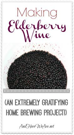 Elderberry wine making with step by step instructions | This is not a country recipe for elderberry wine, this is a serious winemaker's recipe. #pioneersettler