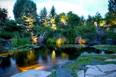 bassin de jardin avec un bel éclairage en tant que déco