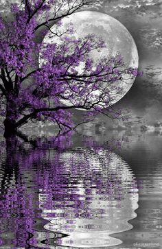 One still moon one rippling moon (Source: avereunsogno62)