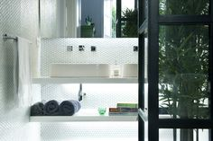 Mini bambu gardens inside your home | IISPACES