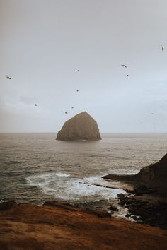 Click to read the ultimate Oregon Coast Road Trip resource! We're sharing Oregon bucket list stops, Pacific northwest hikes, and all the iconic stops on your PNW road trip. Save for your next summer adventure! #oregon #PNW #oregoncoast #cannonbeach #PacificNorthwest #roadtrip #pacificocean #beach #travel #summer #rain #photography #adventure Oregon Coast Hikes, Oregon Coast Camping, Oregon Road Trip, Oregon Travel, Travel Oklahoma, Florida Travel, Mexico Travel, Pacific Coast Highway, Highway Road