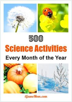 Over 500 science activities for kids for each month of the year, with season themes and activities for kids from preschool kindergarten to high school. Great STEM resource for science class at school or homeschool or after school activities at home. Preschool Science, Preschool Kindergarten, Science Classroom, Teaching Science, Science For Kids, Science Fun, Science Ideas, Earth Science, Preschool Themes By Month