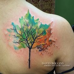 Hmm...maybe this one? tattoos trees four seasons