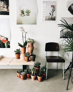 plant styling inspiration via @herz.und.blut on instagram. / sfgirlbybay