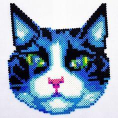 Grumpy Cat Perler Bead Pattern Cats Pinterest Grumpy   My Wallpaper