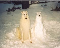 14 Pets and Their Snowmen
