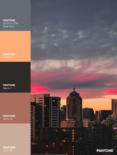 Palettes / Color : No. 25 Pantone Black, Desktop Screenshot, Palette, Color, Colour, Pallets, Colors