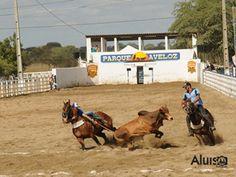 5ª Vaquejada Parque Aveloz