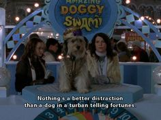 The Amazing Doggy Swami