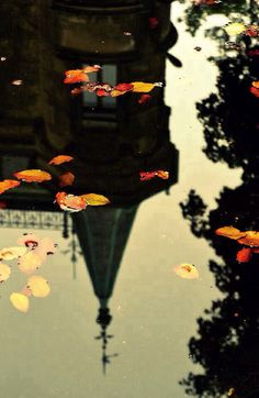 Autumn on We Heart It.