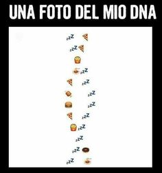 Funny Images, Funny Pictures, Italian Memes, Stupid Quotes, Married With Children, Harry Potter Marauders, Funny Phrases, Dance Moms, Cringe