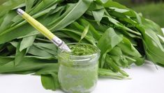 Pesto, Marinade Sauce, Wild Garlic, Celery, Vegetables, Desserts, Recipes, Sauces, Food