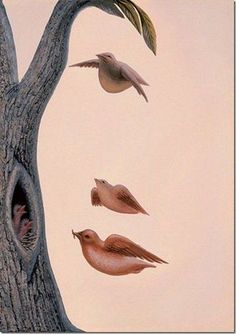 Unbelievable Optical Illusion Or Hidden Images art Work by Octavio Ocampo Image Illusion, Illusion Pictures, Illusion Art, Cool Illusions, Optical Illusions Pictures, Funny Illusions, Double Picture, Double Image, Hidden Images