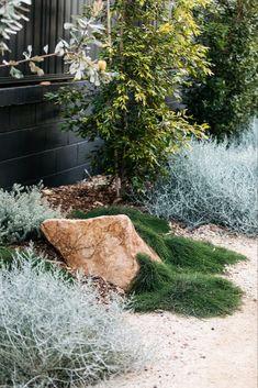 Modern Australian Garden, Contemporary Garden, Seaside Garden, Coastal Gardens, Landscaping With Rocks, Backyard Landscaping, Outdoor Plants, Outdoor Gardens, Dry Garden