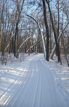 Cross Country Ski Trail Conditions