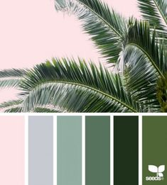 ✮ Color Frond 8 May 17 Design Seeds ® 2018 Green Color Schemes, Green Colour Palette, Bedroom Color Schemes, Bedroom Colors, Green Colors, Bedroom Color Palettes, Color Schemes Colour Palettes, Color Trends, Color Combinations