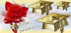 fai da te Rose sweets segnaposto festa di laurea con simboli del laureato