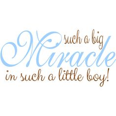 Such a Big Miracle in such a Little Boy - Nursery Wall Decal - Wall Quote Decal
