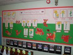 dydd gwyl dewi sant Display, Classroom Display, class display, saint davids day, daffodil, wales, dragon, Early Years (EYFS), KS1 & KS2 Primary Resources