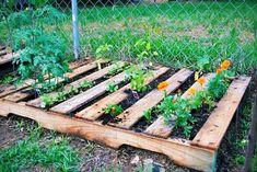 Top-DIY-Garden-Decorations-Ideas (11)