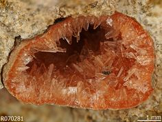 Heulandite-Na, (Na,Ca)2-3Al3(Al,Si)2Si13O36 · 12H2O, Warm Spring Creek, Challis, Custer County, Idaho, USA. Orange tabular crystals lining a vug