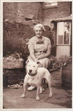 This bully is one of the now extinct White Terrier that established the Boston Terrier breed! Dog Photos, Dog Pictures, Vintage Pictures, Nanny Dog, Pitbull Terrier, Boston Terrier, English Bull Terriers, Pit Bull Love, Vintage Dog