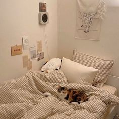 Room Design Bedroom, Room Ideas Bedroom, Small Room Bedroom, Bedroom Decor, Bedroom Inspo, Korean Bedroom Ideas, Study Room Decor, Study Rooms, Minimalist Room
