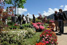 Visitatori al Festival del verde e del Paesaggio