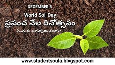 World SoilDay in telugu, World Soil day essay in telugu, History of World Soil Day, about World Soil Day, Themes of World Soil Day, Celebrations of World Soil Day, World Soil Day, prapancha nela dinotsavam, Day Celebrations, Days Special, What today special, today special, today history, Days, Important days, important days in telugu, important days in December, Student Soula, Important Days In December, Days In September, Today History, Telugu, Celebrations, Student, World, The World
