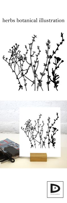 instant download #botanical #botanicalillustration #minimalart #minimal #homedecor #printableposter #printables #meadow #grasses #herbs #etsy #dinadankersdesign #summerflowers #floral
