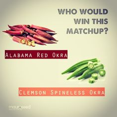 The matchup of the year.  Forget  who would win this matchup?  #Clemson #Alabama #roll tide #okra