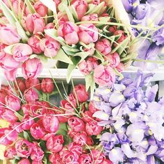 It's Friday. Buy yourself flowers. @becca_culotta #LoveUO