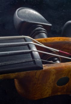5 key points to examine on your instrument that could effect violin string height and make your instrument easier or harder to play.