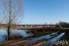 Uiterwaarden Deventer 2014 http://blog.qdraw.nl/overijssel/uiterwaarden-deventer-2014/