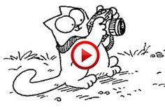 Simon's Cat: Fetch #SimonsCat, #humor, #funny, #pinsland, #videobox, https://apps.facebook.com/yangutu